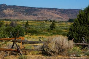 Steens outback